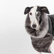 abrigo-galgo-polipiel-06