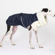 abrigo-galgo-tejano-05