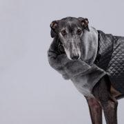 carita-de-lapiz-abrigo-polipiel-02