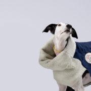 carita-de-lapiz-abrigo-tejano-02